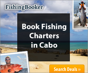 Fishing Charters in Cabo San Lucas, Los Cabos